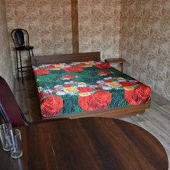 Гостиница Спартак Стандартный номер с двуспальной кроватью фото 2