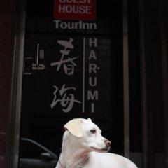 Отель Tourinn Harumi с домашними животными