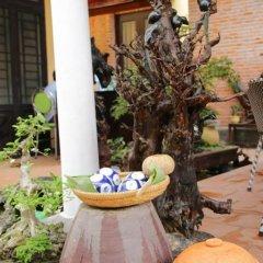 Отель The Grass Vy Homestay Хойан фото 7