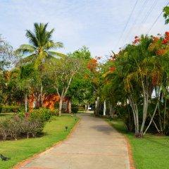 Отель Gusto Tropical Dependance Доминикана, Бока Чика - отзывы, цены и фото номеров - забронировать отель Gusto Tropical Dependance онлайн фото 8