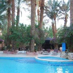 Отель Kasbah Sirocco Марокко, Загора - отзывы, цены и фото номеров - забронировать отель Kasbah Sirocco онлайн детские мероприятия