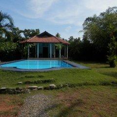 Отель Zum Deutschen Шри-Ланка, Бентота - отзывы, цены и фото номеров - забронировать отель Zum Deutschen онлайн бассейн