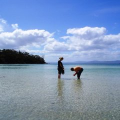 Bruny Island Escapes and Hotel Bruny пляж
