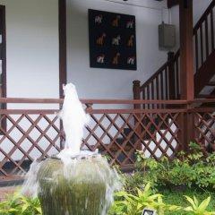 The White Avenue Hotel фото 6