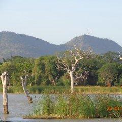 Отель Goyagala Lake Resort фото 3