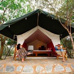 Отель The Naturalist Luxury Tents Другое