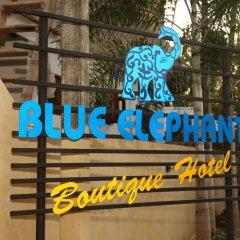 Blueelephant Boutique Hotel развлечения