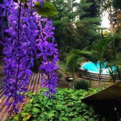 Отель Casa Xochicalco Гондурас, Тегусигальпа - отзывы, цены и фото номеров - забронировать отель Casa Xochicalco онлайн фото 3