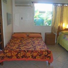 Отель Pension Armelle Bed & Breakfast Tahiti Французская Полинезия, Пунаауиа - отзывы, цены и фото номеров - забронировать отель Pension Armelle Bed & Breakfast Tahiti онлайн комната для гостей фото 4
