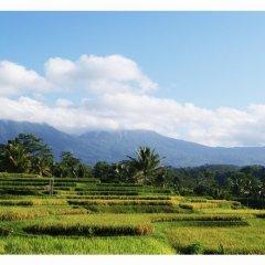 Отель Ti Amo Bali Resort фото 2