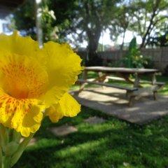 Отель The Gardens Utila Гондурас, Остров Утила - отзывы, цены и фото номеров - забронировать отель The Gardens Utila онлайн фото 5
