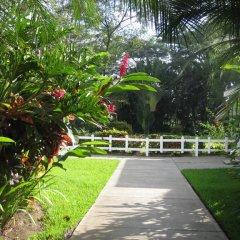 Отель Metrotel Express Гондурас, Сан-Педро-Сула - отзывы, цены и фото номеров - забронировать отель Metrotel Express онлайн фото 13