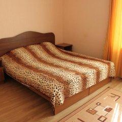 Гостевой Дом Аэросвит Стандартный номер с двуспальной кроватью фото 2