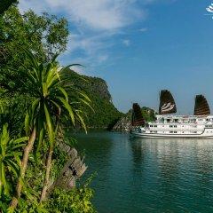 Отель Bhaya Cruises Халонг пляж