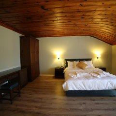 Akkent Garden Hotel 4* Стандартный номер с различными типами кроватей