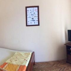 Апартаменты Apartments Pejanovic комната для гостей фото 4