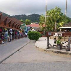 Отель Lotus Paradise Resort Таиланд, Остров Тау - отзывы, цены и фото номеров - забронировать отель Lotus Paradise Resort онлайн фото 5
