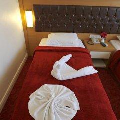 Forest Park Hotel 3* Стандартный номер с различными типами кроватей фото 17