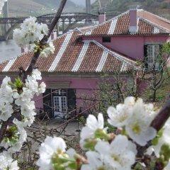 Отель Casa Dos Varais, Manor House фото 5
