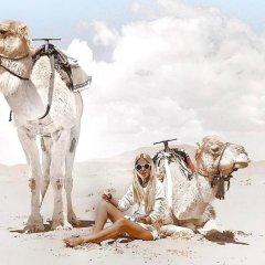 Отель Ali & Sara's Desert Palace Марокко, Мерзуга - отзывы, цены и фото номеров - забронировать отель Ali & Sara's Desert Palace онлайн пляж фото 2