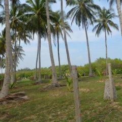 Отель Aqua Front Yala Resort пляж фото 2