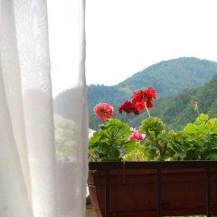Family Hotel Flora Ардино балкон