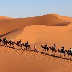 Отель Auberge Kasbah Des Dunes Марокко, Мерзуга - отзывы, цены и фото номеров - забронировать отель Auberge Kasbah Des Dunes онлайн приотельная территория