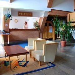 Отель Pensjonat Biały Potok гостиничный бар