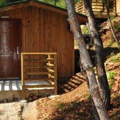 Tree Houses 3* Бунгало с различными типами кроватей фото 4