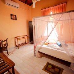 Отель Frangipani Motel 3* Номер категории Эконом с различными типами кроватей