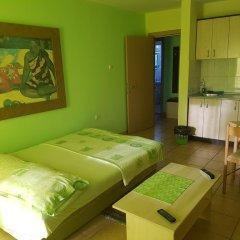 Апартаменты Apartments Kamenjar Нови Сад комната для гостей фото 2