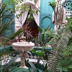 Отель Dar Kleta Марокко, Марракеш - отзывы, цены и фото номеров - забронировать отель Dar Kleta онлайн фото 5