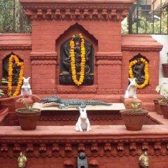 Отель Kathmandu Bed & Breakfast Inn Непал, Катманду - отзывы, цены и фото номеров - забронировать отель Kathmandu Bed & Breakfast Inn онлайн фото 8