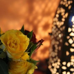 Отель Dar Rita Марокко, Уарзазат - отзывы, цены и фото номеров - забронировать отель Dar Rita онлайн