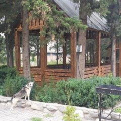 Отель 888 Армения, Иджеван - отзывы, цены и фото номеров - забронировать отель 888 онлайн фото 3