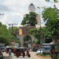 Отель White Bridge House & Resort Шри-Ланка, Берувела - отзывы, цены и фото номеров - забронировать отель White Bridge House & Resort онлайн фото 2