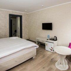 Aster Hotel Group 3* Стандартный номер с различными типами кроватей фото 8