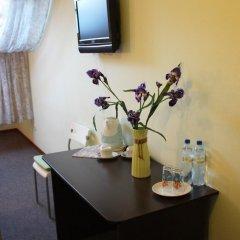 Гостиница Ирис 3* Стандартный номер разные типы кроватей фото 31