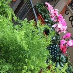 Отель Alle Antiche Mura del Vicolo Италия, Палермо - отзывы, цены и фото номеров - забронировать отель Alle Antiche Mura del Vicolo онлайн фото 2