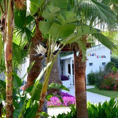 Side Resort Hotel фото 8