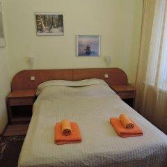 Гостиница АВИТА Стандартный номер с двуспальной кроватью фото 47