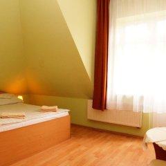 Отель Halny Pensjonat 2* Стандартный номер фото 11