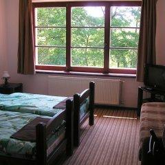 Гостиница Дубки 3* Стандартный номер с различными типами кроватей фото 2