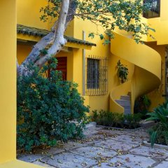 Отель Demetria Bungalows Мексика, Гвадалахара - отзывы, цены и фото номеров - забронировать отель Demetria Bungalows онлайн фото 6