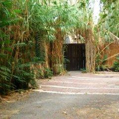 German Colony Garden Израиль, Иерусалим - отзывы, цены и фото номеров - забронировать отель German Colony Garden онлайн парковка