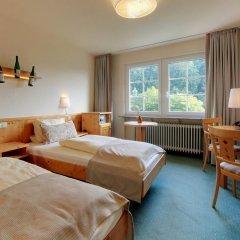 Отель Akzent Waldhotel Rheingau 4* Стандартный номер с различными типами кроватей фото 2