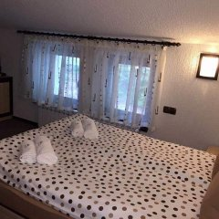 Family Hotel Ginger комната для гостей фото 5