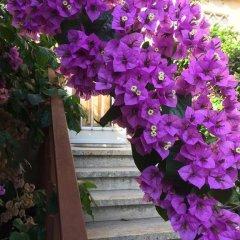 Отель B&B Il Corbezzolo Италия, Остия-Антика - отзывы, цены и фото номеров - забронировать отель B&B Il Corbezzolo онлайн фото 3