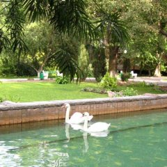 Шереметьевский Парк Отель фото 4