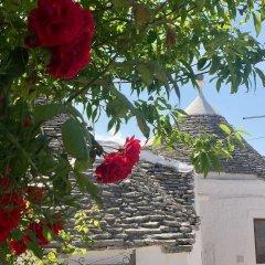 Отель Trulli Vacanze in Puglia Италия, Альберобелло - отзывы, цены и фото номеров - забронировать отель Trulli Vacanze in Puglia онлайн фото 10